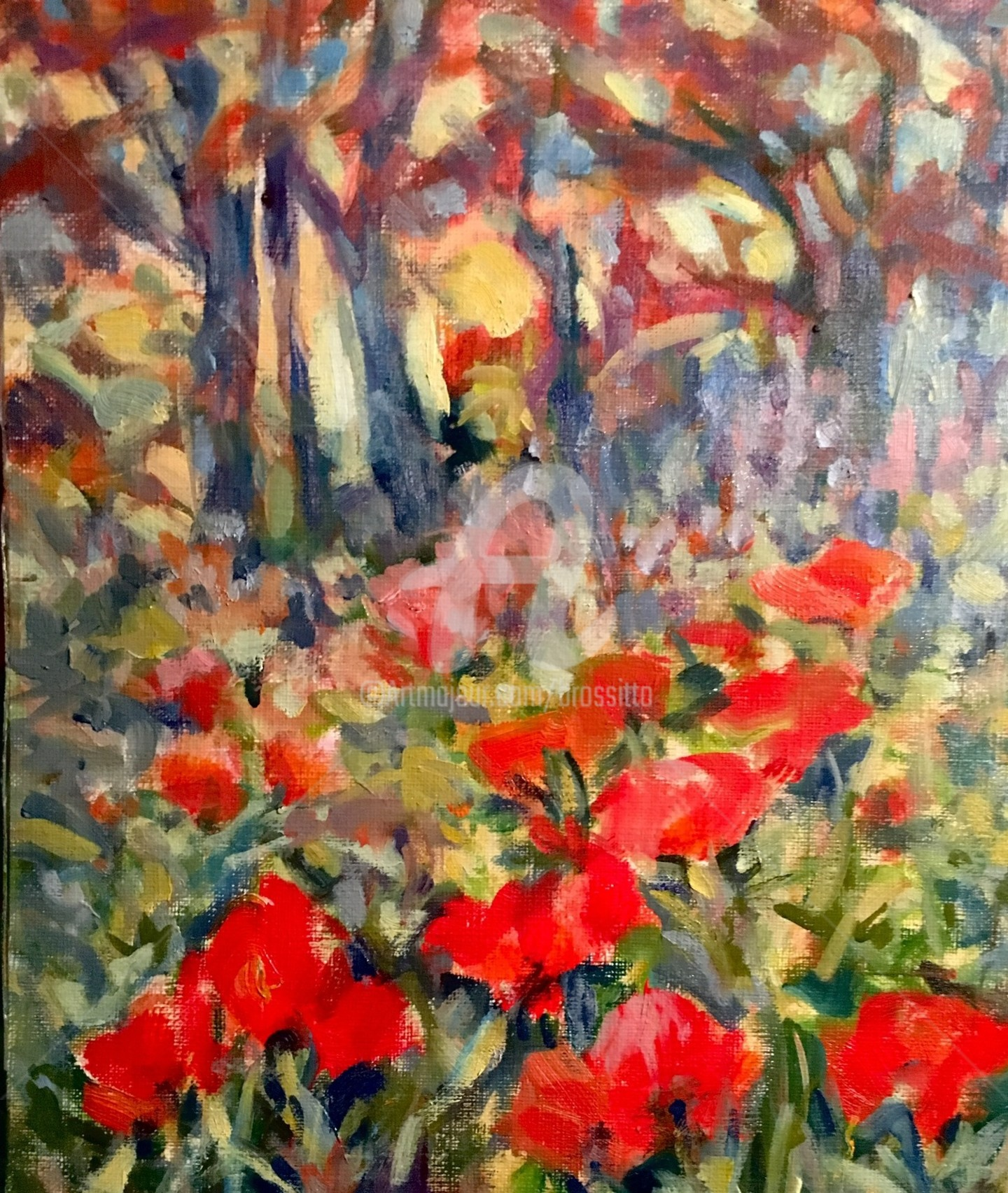 B.Rossitto - Lake Placid Poppies Study