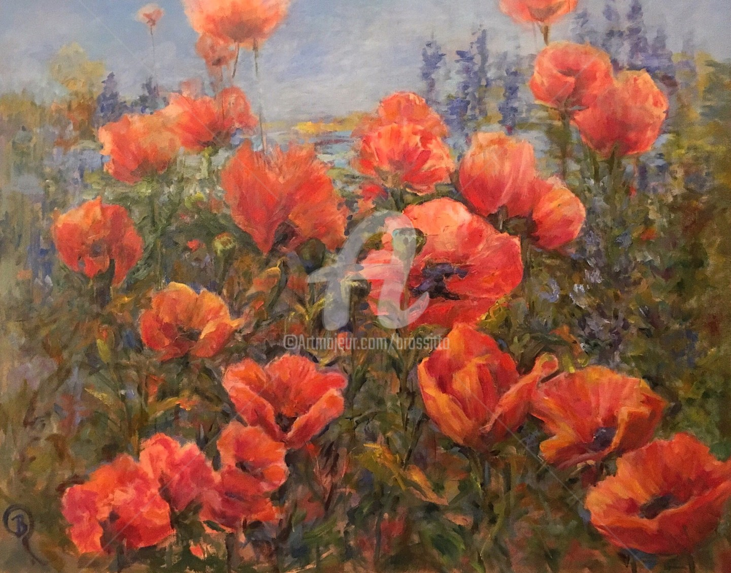 B.Rossitto - Field of Poppies Lake Placid