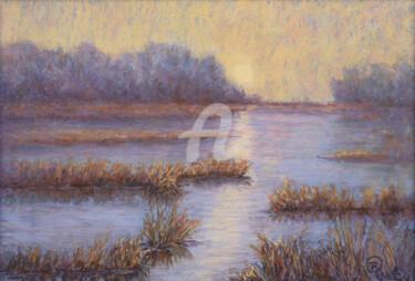 Colors of the Winter Marsh III