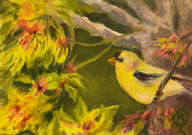 Goldfinch in cherry tree