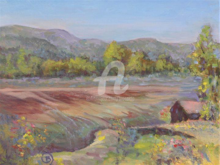 B.Rossitto - Adirondack farm