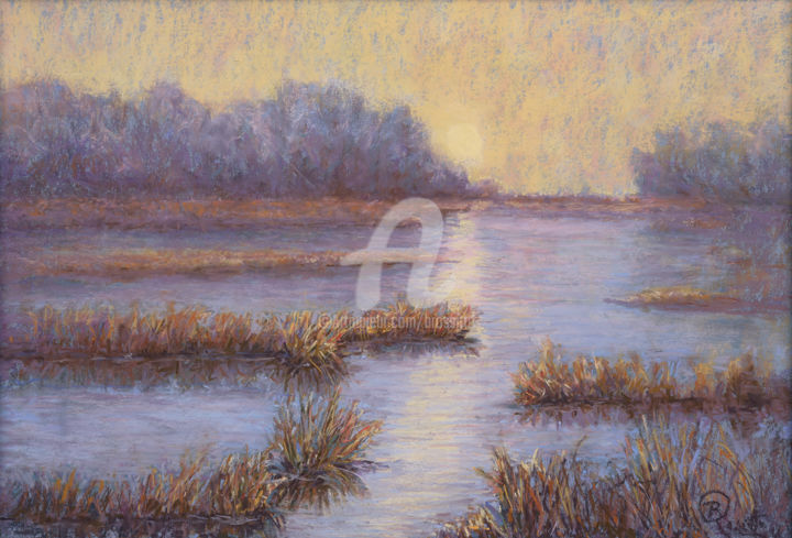 B.Rossitto - Colors of the Winter Marsh III